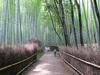 kyoto22.jpg